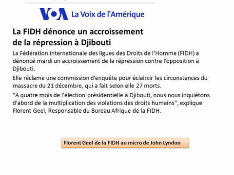 Florent Geel, FIDH, Djibouti, 6/01/2016